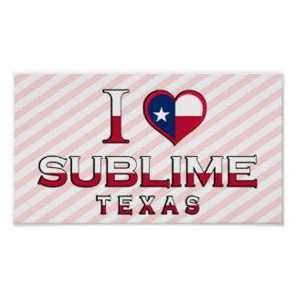 Sublime, Texas Posters