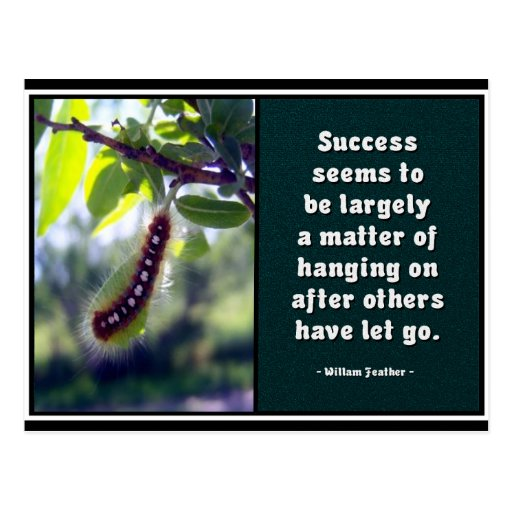 Success Seems To Be... Postcard