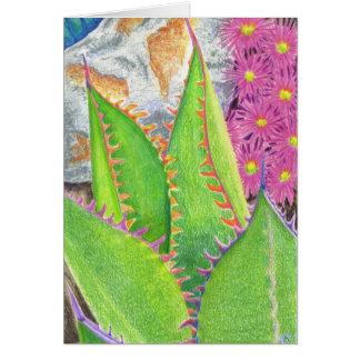 Succulent 3 card