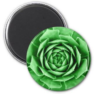 Succulent 6 Cm Round Magnet