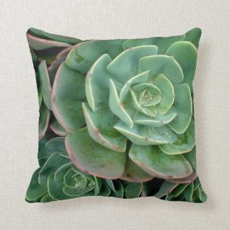 Succulent American MoJo Pillow Throw Cushion