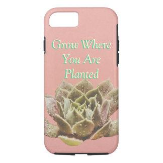 Succulent Choose your color iphone 5 case