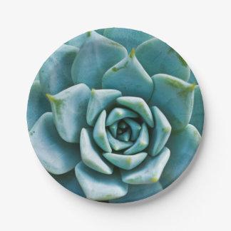 Succulent Closeup 7 Inch Paper Plate