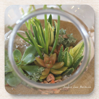 Succulent coasters by Debra Lee Baldwin