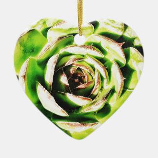 Succulent Dble-sided Heart Ornanent Ceramic Ornament