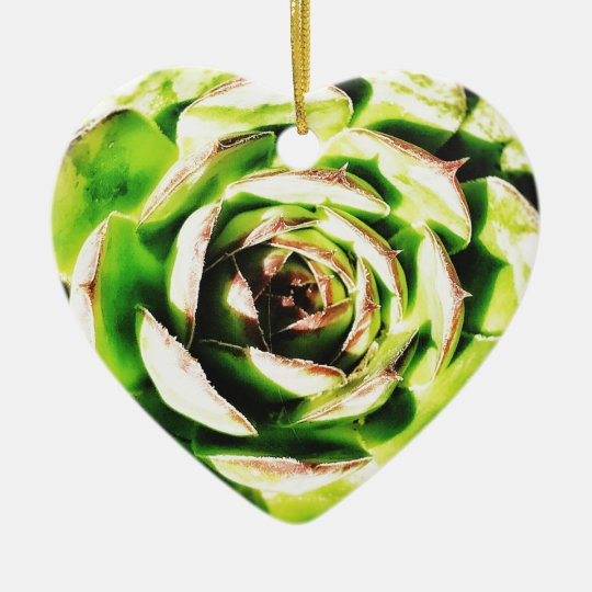 Succulent Dble-sided Heart Ornanent Ceramic Ornament