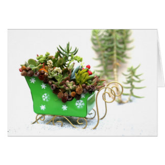 Succulent Filled Sleigh Holiday Greeting Card