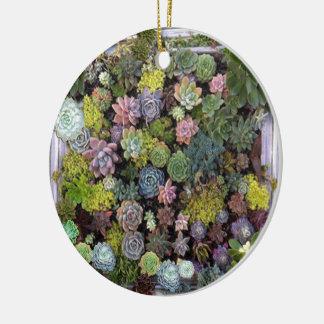 Succulent garden design ceramic ornament