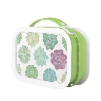 Succulent Garden Pattern Lunch Box