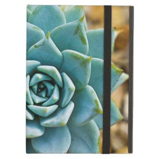Succulent iPad Air Case