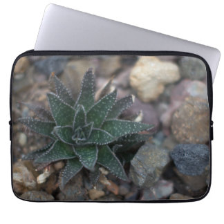 Succulent on Rocks Laptop Sleeve