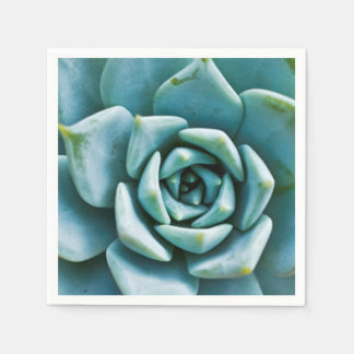 Succulent Paper Napkin