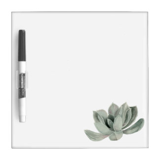 Succulent Plant Watercolor Painting Dry Erase Board