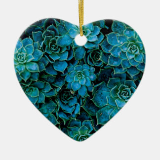 Succulent Plants Ceramic Ornament