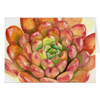 Succulent Sedeveria 'Pink Ruby' watercolor by DLB Card