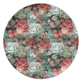 Succulent Succulents Plate