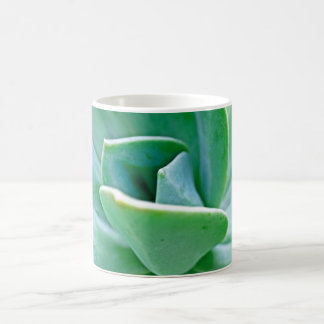 Succulent Swirl Coffee Mug