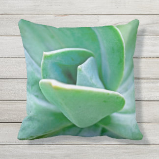 Succulent Swirl Throw Pillow