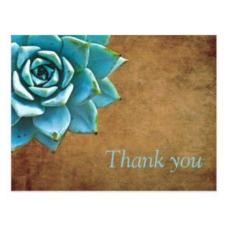 Succulent Thank You Watercolor Rustic Brown Postcard