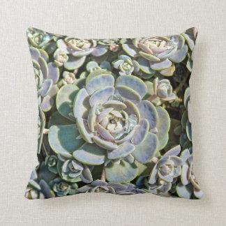 Succulent Toss Pillow