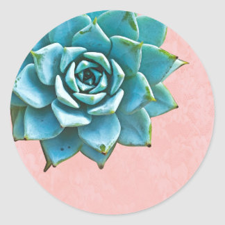 Succulent Watercolor Pink Lace Classic Round Sticker