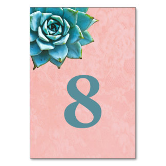 Succulent Watercolor Pink Lace Table Cards