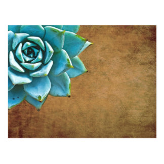Succulent Watercolor Rustic Brown Postcard