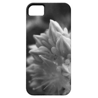 SucculentBouquet iPhone 5 Cover