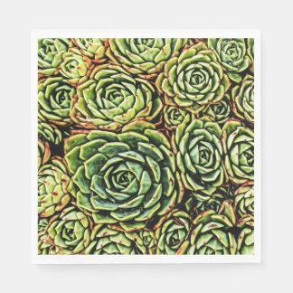 Succulents Napkins Disposable Napkins