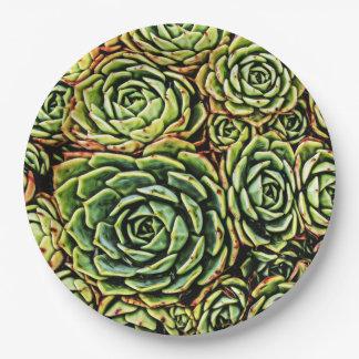 Succulents Paper Plates