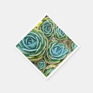 Succulents Paper Serviettes