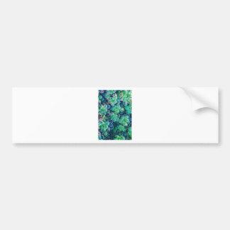 Succulents, Succulent, Cactus, Cacti, Green, Plant Bumper Sticker