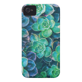 Succulents, Succulent, Cactus, Cacti, Green, Plant Case-Mate iPhone 4 Cases
