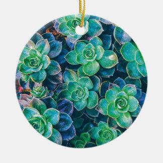 Succulents, Succulent, Cactus, Cacti, Green, Plant Ceramic Ornament
