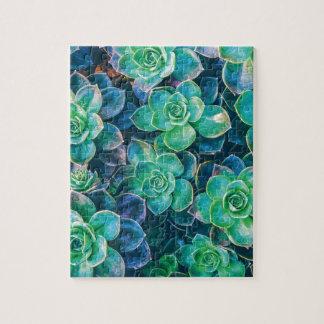 Succulents, Succulent, Cactus, Cacti, Green, Plant Jigsaw Puzzle