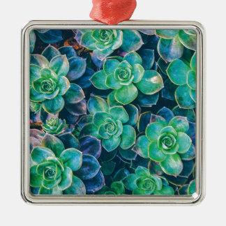 Succulents, Succulent, Cactus, Cacti, Green, Plant Metal Ornament