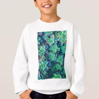 Succulents, Succulent, Cactus, Cacti, Green, Plant Sweatshirt