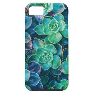 Succulents, Succulent, Cactus, Cacti, Green, Plant Tough iPhone 5 Case