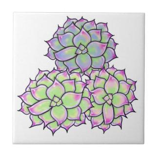 Succulents Tile