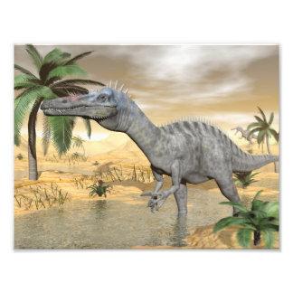 Suchomimus dinosaurs in desert - 3D render Photo Print