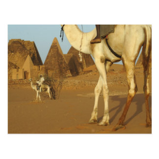 Sudan, North (Nubia), Meroe pyramids with Postcard