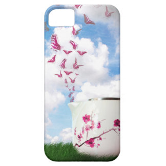 Sugar and Spice iPhone 5 Covers