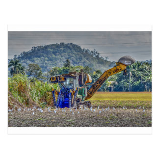 SUGAR CANE HARVESTOR QUEENSLAND AUSTRALIA POSTCARD