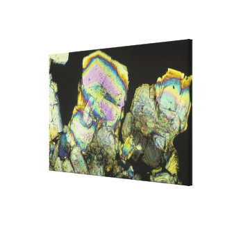 Sugar Crystals Viewed in Polarized Light 2 Canvas Print