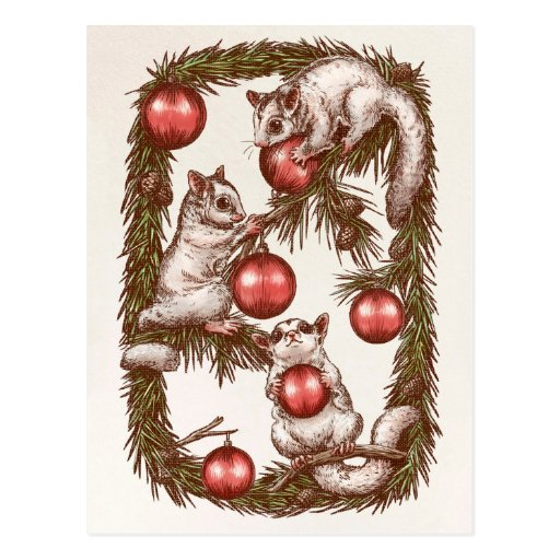 Sugar Glider Christmas Postcard