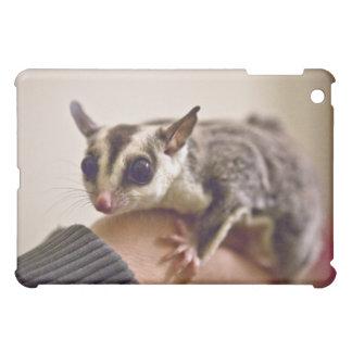 Sugar Glider iPad case