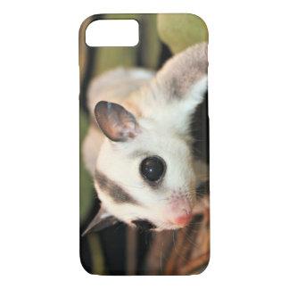 Sugar Glider iPhone 8/7 Case