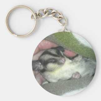 Sugar Glider Sleeping in Blanket Key Ring