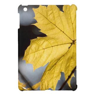Sugar maple, fall iPad mini case