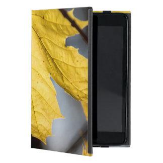 Sugar maple, fall iPad mini cover